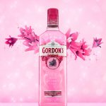 gordons-pink_catarinarjoao_assignement51