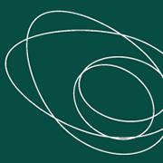 avocado 360°
