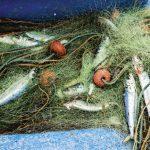 07-fishingnets