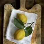 5b.lemon-tart2