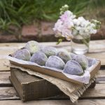 fruit.figs-on-book