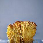 enoki-mushrooms-1