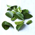 kaffir-lime-leaves-copy