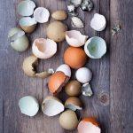 1-cleaver-eggsimg-0048