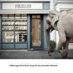 vw-srgb-frontassist-elefant