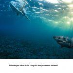 vw-srgb-frontassist-surfhai