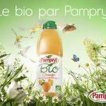 tapestry-05-pampryl-karin-berndl