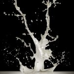 1585-milk-splash