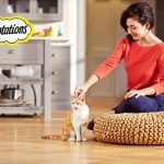 160922-temptations-kittens-kitchen-with-owner-169-t