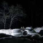 4-trees-cars-snow