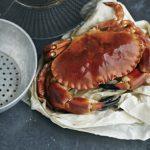 matt-russell-crab-6931