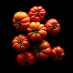 09-tomato-test-v4-edit
