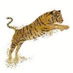 david-arky-world-wildlife-fund