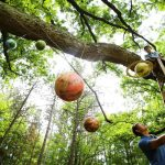 Father and son work hang paper mache solar system planets from a