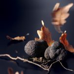 10-michaelmeisen-truffles
