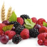02-fruits-of-the-forest