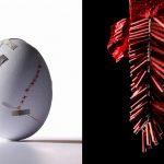 adam-voorhes-28-still-life-spotlight-12-march-15