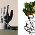 details-bodyhack-hand.jpg-adam-voorhes-photography-still-life-photography-6-oct-15