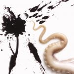 06-octopus-sh-rgb