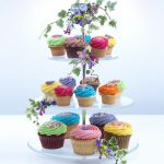 master-cupcakes