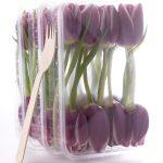 ingrid-von-hoff-tulpen