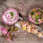 mona-lorenz-austria-showcase-may-pink