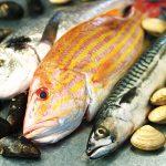 6-healthyfish