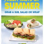 subway-summer-subs-a1-a-frame
