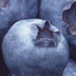 Ft_Blueberry