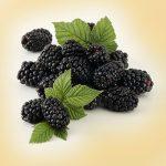 Solero_Blackberries