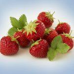 Solero_Strawberry