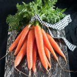 carrots-on-black-2