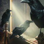 ravens-hr