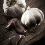 0187-garlic