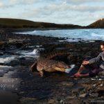 aigle-crocodile