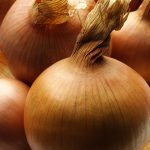 onion-3-copy