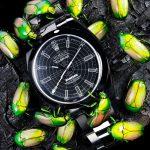 01-beetles