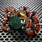 01-snake-1