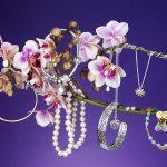 jewellery-1b