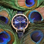 peacockwatch