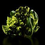 ny-ct-romenesco-broccoli-black-jens-johnson-photographer-food