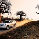 10.toyota-prado-baobabs-desmond-kleineibst-cars-and-landscape-photography-13-sep-16