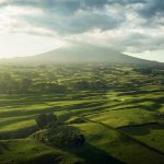 mounttaranaki-nzstory-chris-sisarich-cars-and-landscape-photography-jan-17