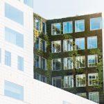amsterdam-architecture-2